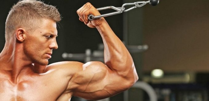 Increasing your muscles